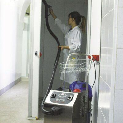 Dampfreiniger Michel 9000
