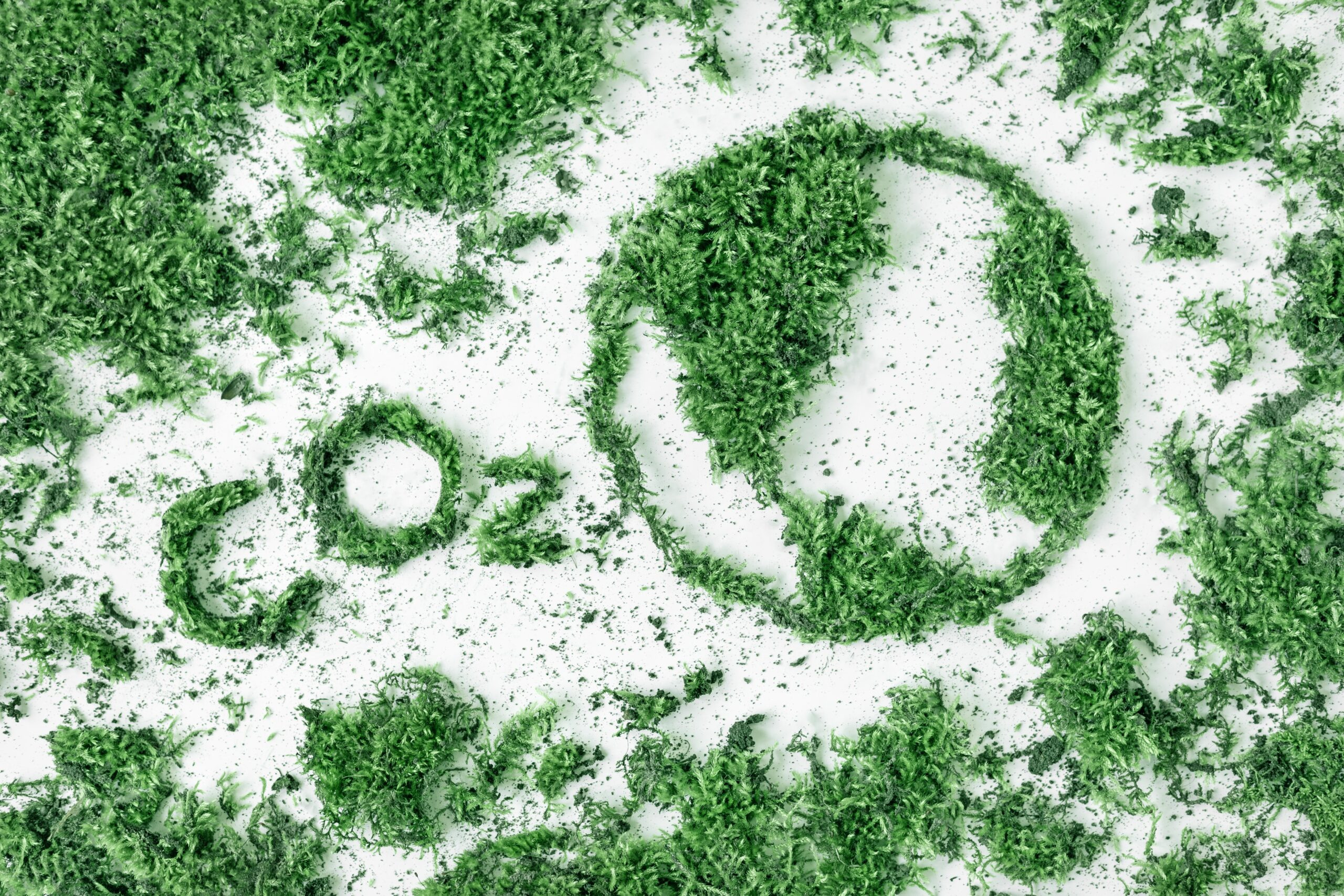 lettering co2 and drawing planet earth from grass and moss the concept of ecology air pollution and t20 b64Xbg - Robot-Clean der biologische, universelle Duft Reiniger(Sandelholz) - gebrauchsfertig